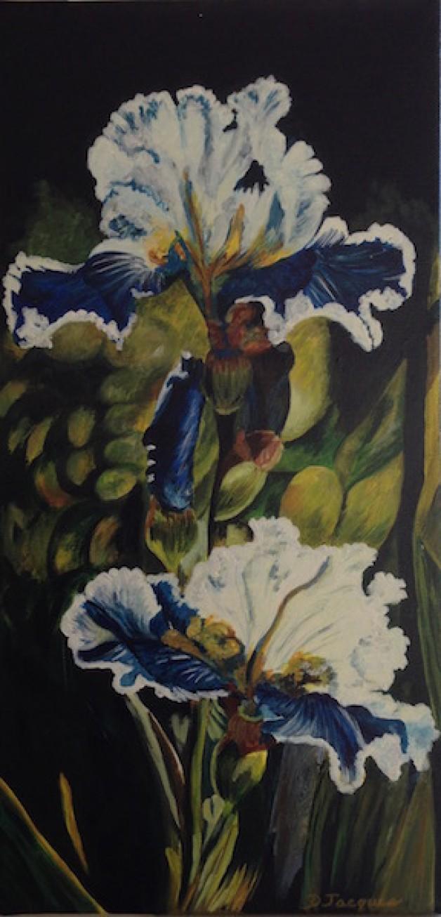 Exotic Iris